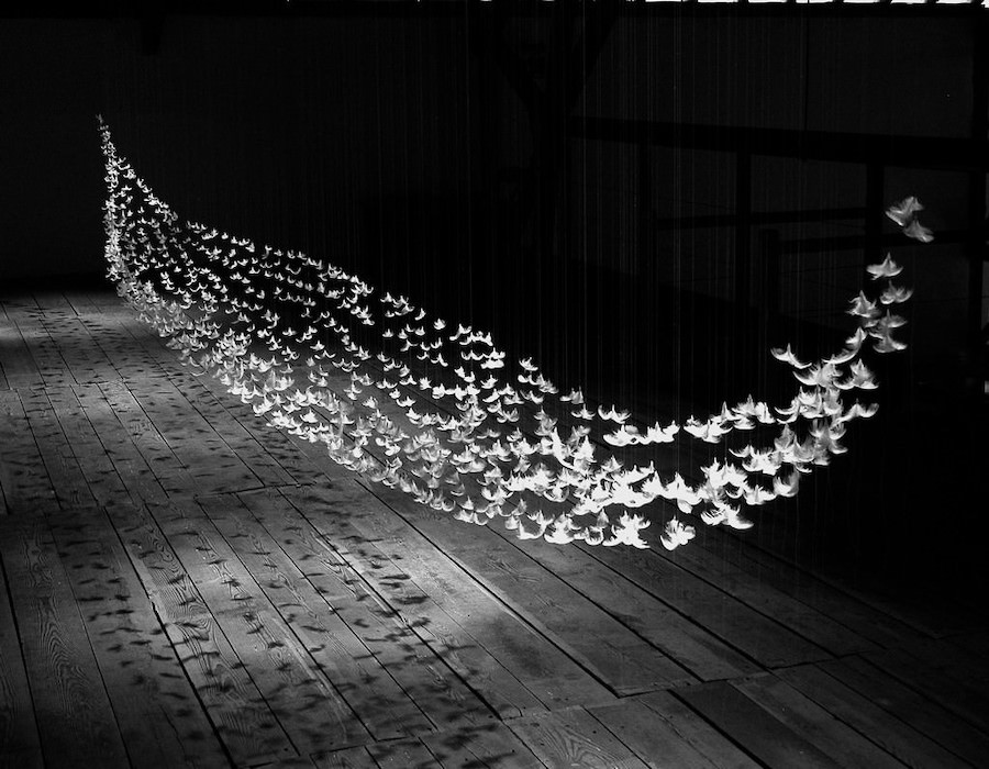 Arte contemporanea, i colori dell'ombra